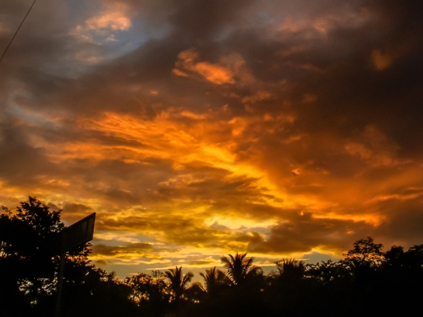 cuando empieza a salir el sol para calentar el agua de  un cenote en Tulum